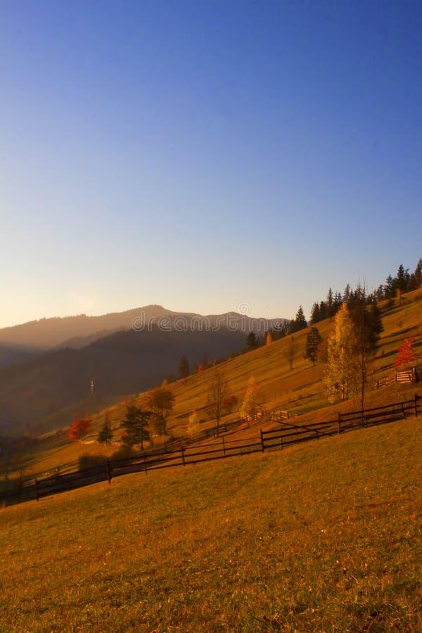 Herfstzonsondergang en kleurrijke bomen stock foto
