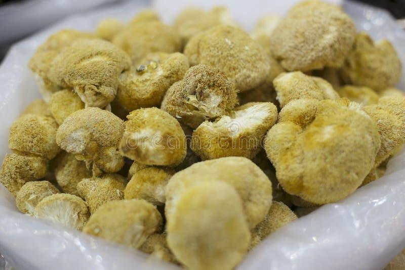 Hericium. Monkey head mushroom in the market stock images
