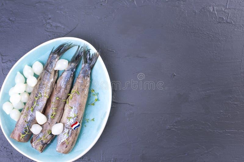 Heringsfilets mit Zwiebeln auf einer blauen Platte, eine traditionelle niederländische Zartheit Köstliche Meeresfrüchtemahlzeit K lizenzfreie stockbilder
