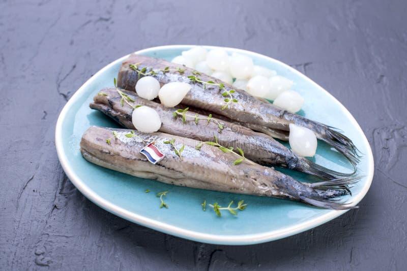 Heringsfilets mit Zwiebeln auf einer blauen Platte, eine traditionelle niederländische Zartheit Köstliche Meeresfrüchtemahlzeit K lizenzfreies stockbild