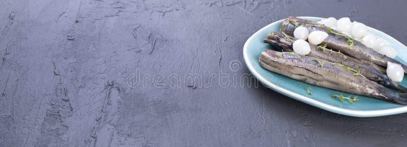 Heringsfilets mit Zwiebeln auf einer blauen Platte, eine traditionelle niederländische Zartheit Köstliche Meeresfrüchtemahlzeit K lizenzfreie stockfotografie