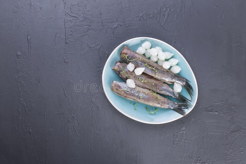 Heringsfilets mit Zwiebeln auf einer blauen Platte, eine traditionelle niederländische Zartheit Köstliche Meeresfrüchtemahlzeit K stockbild