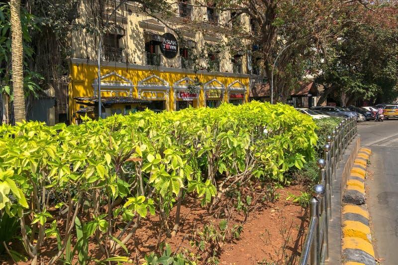 Heritage building at yellow green traffic bay Kalaghoda Fort Mumbai stock images
