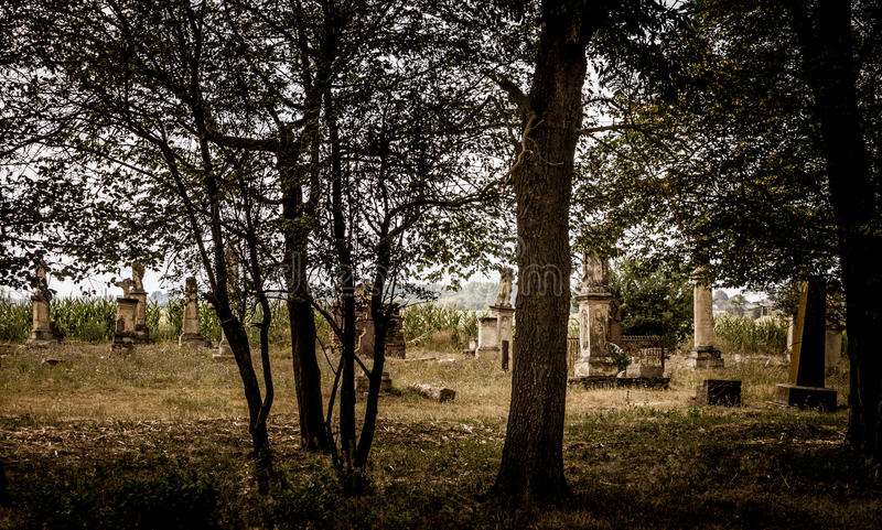Heritage of the past. Gothic cemetery. Old abandoned Gothic cemetery in the wood royalty free stock photo
