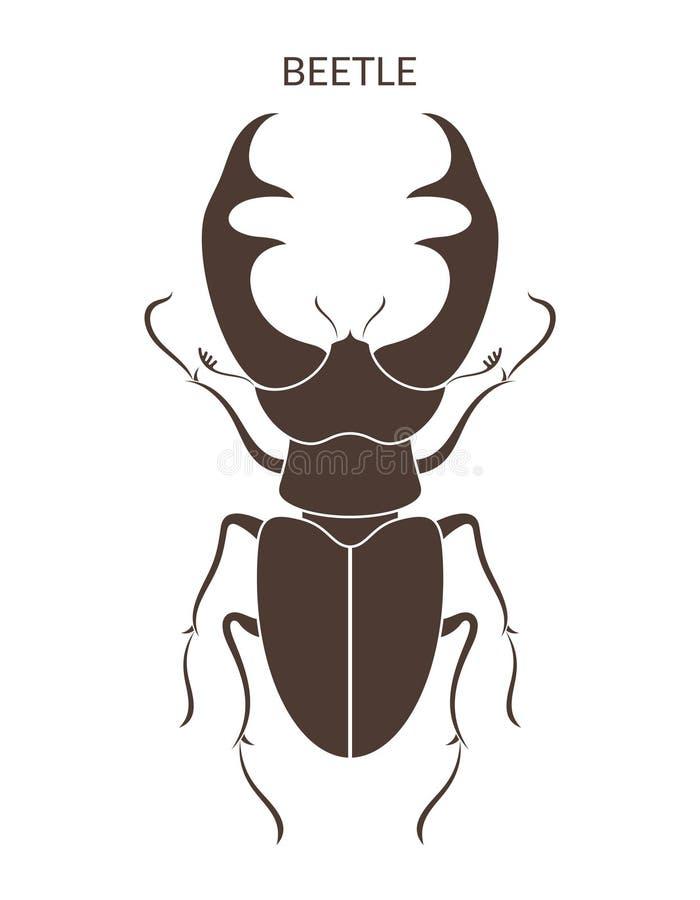 Herkules-Käfer Insekten auf weißem Hintergrund vektor abbildung