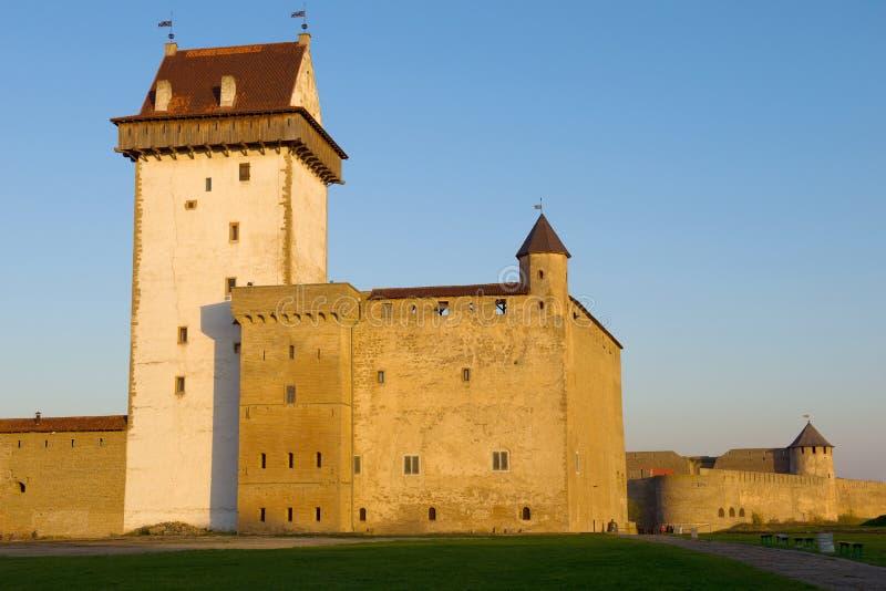 Herman Castle à vista do sol de ajuste, noite do outono Narva, Estônia fotos de stock royalty free