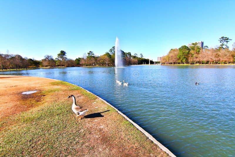 Hermann Park en Houston imagenes de archivo