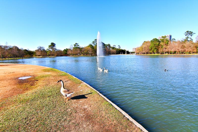 Hermann Park ? Houston images stock