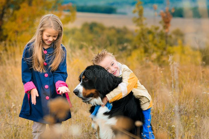 hermano y su hermana en paseo con su amigo cuadrúpedo o del perro fotos de archivo