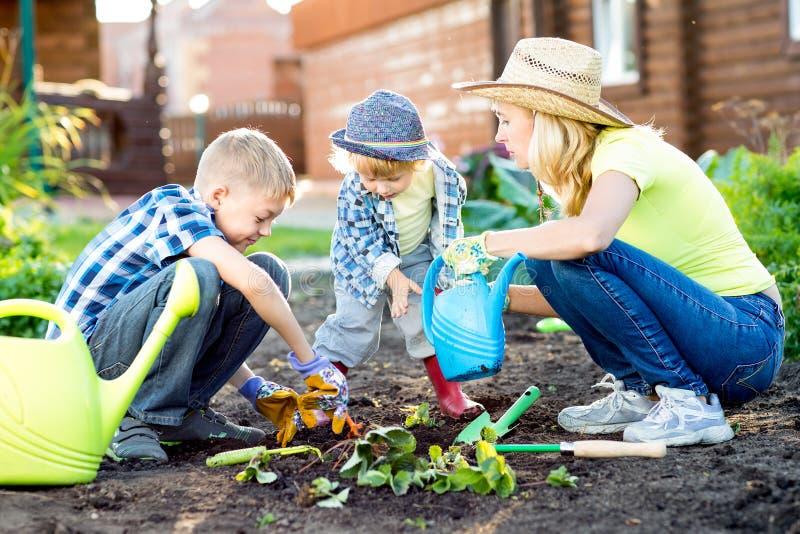 Hermanos de los niños como jardineros con su madre - niños y familia imagen de archivo