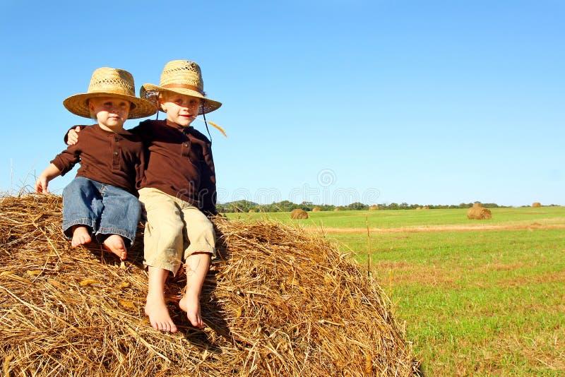Hermanos lindos afuera en la granja fotos de archivo