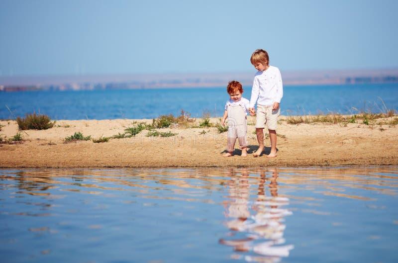 Hermanos lindos, muchachos que caminan a lo largo del lago en agua poco profunda por la mañana del verano fotografía de archivo