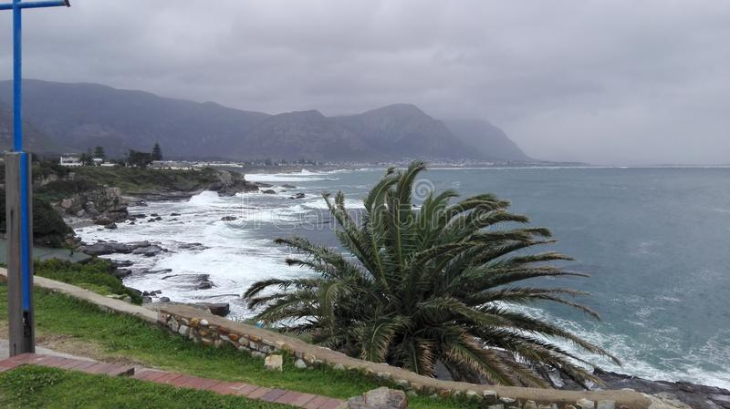 Hermanus, le Cap-Occidental photos stock