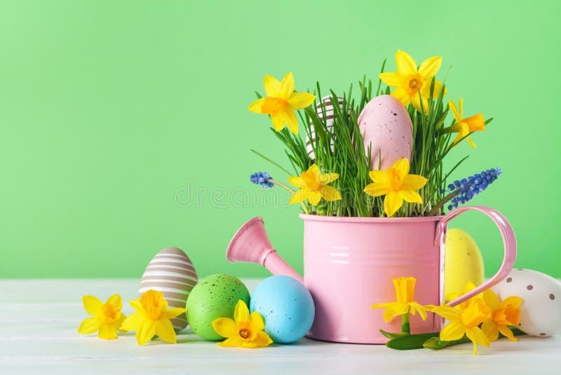 Hermosa composición primaveral con coloridos huevos de Pascua, flores daffodil de primavera y hierba verde fotos de archivo