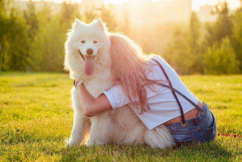 Hermosa joven rubia rubia y feliz con pantalones cortos de denim abrazando a un blanco y molido perro samoyado en el parque de ver foto de archivo libre de regalías