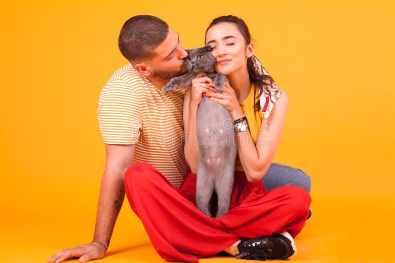 Hermosa pareja joven sentada en el estudio y amando a su adorable gato imágenes de archivo libres de regalías