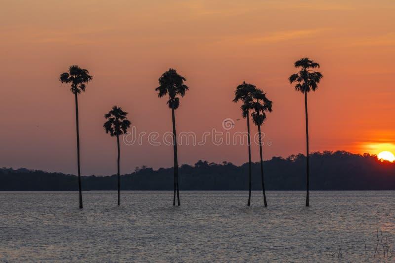 Hermosa puesta de sol en el reservorio Malampuzha, vista desde el punto de vista Kava Palakkad, Kerala India fotos de archivo
