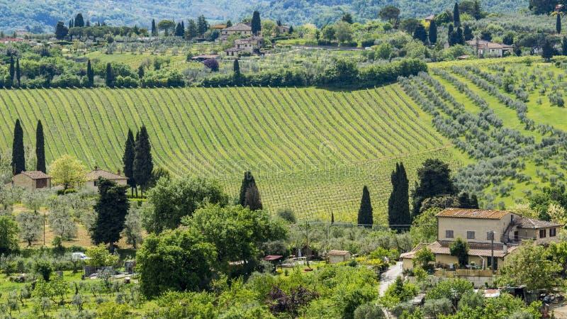 Hermosa vista de campos y de prados verdes en la puesta del sol en Toscana imágenes de archivo libres de regalías