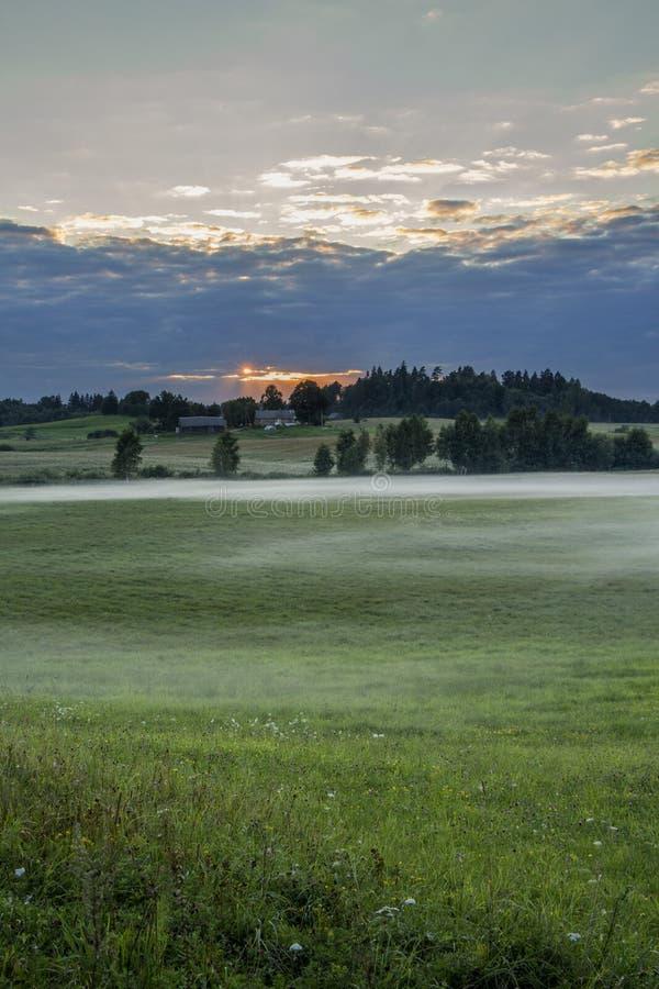 Hermosa vista de campos y de prados verdes en la puesta del sol fotografía de archivo libre de regalías