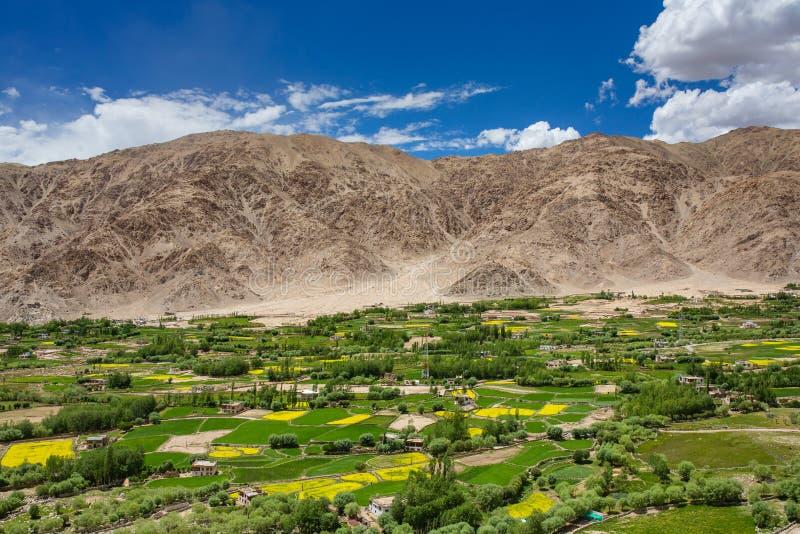 Hermosa vista de la ciudad y del valle verde de Indus, Ladakh, la India de Leh imagen de archivo