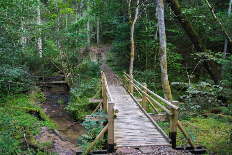 Hermosa vista de un peque?o puente de madera sobre una corriente en el bosque en el parque nacional de Gauja en Letonia fotos de archivo