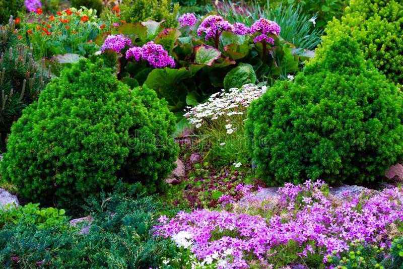Hermosa vista del jardín ajardinado en el patio trasero El ajardinar ajardinando área en verano imagenes de archivo