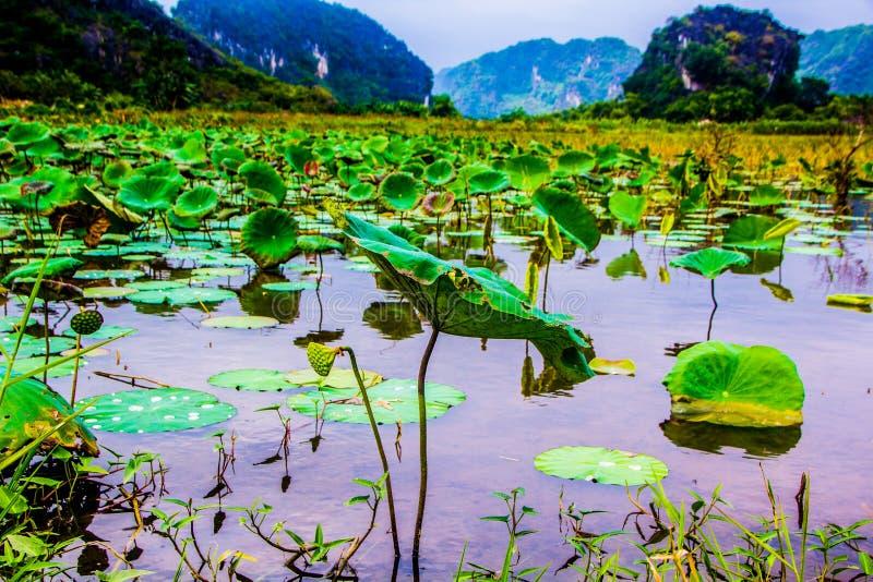 Hermosa vista del lago con las montañas foto de archivo libre de regalías