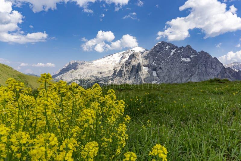 Hermosa vista del macizo de Marmolada en junio Dolomías Italia imagen de archivo libre de regalías