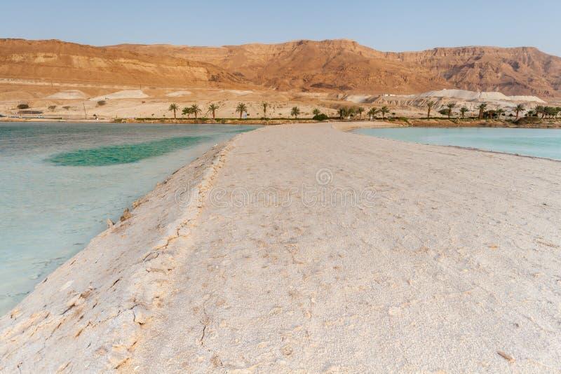 Hermosa vista del mar muerto fotografía de archivo libre de regalías