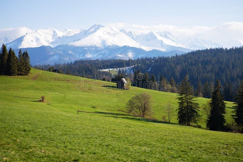 Hermosa vista del paisaje de la montaña, parque nacional de Tatra, Polonia Alto Tatras, Cárpatos fotografía de archivo