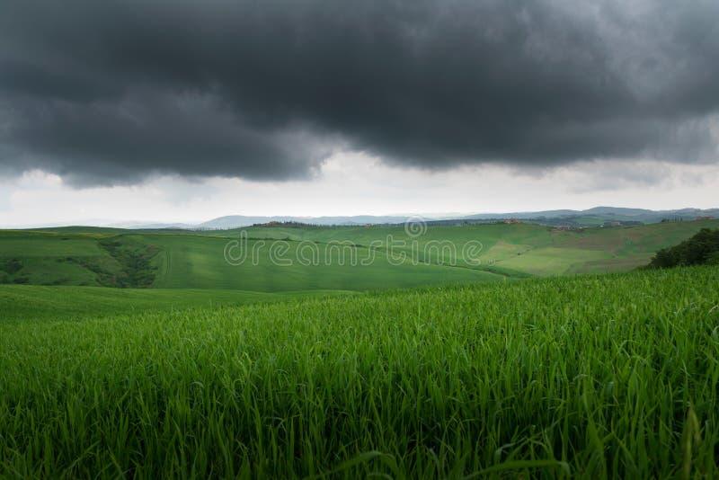 Hermosa vista dramática de campos y de prados verdes en la puesta del sol en Toscana foto de archivo