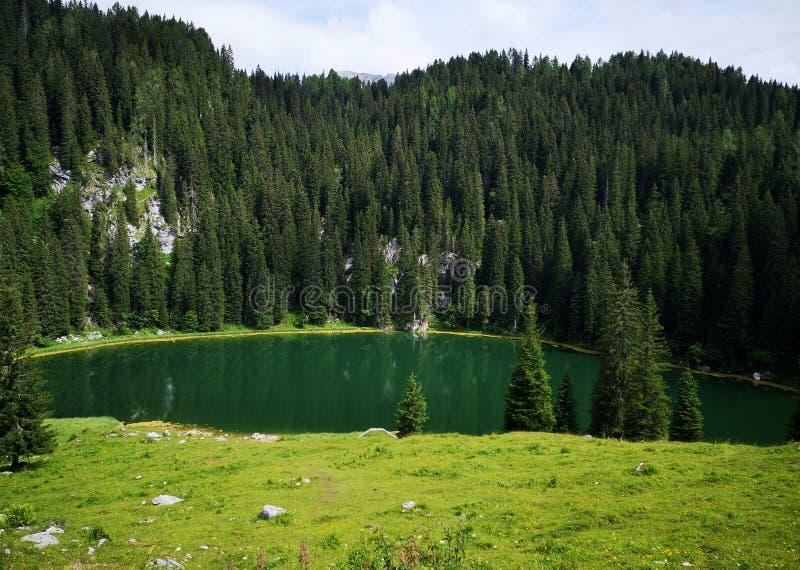 Hermosa vista en el lago alpino en Eslovenia imágenes de archivo libres de regalías