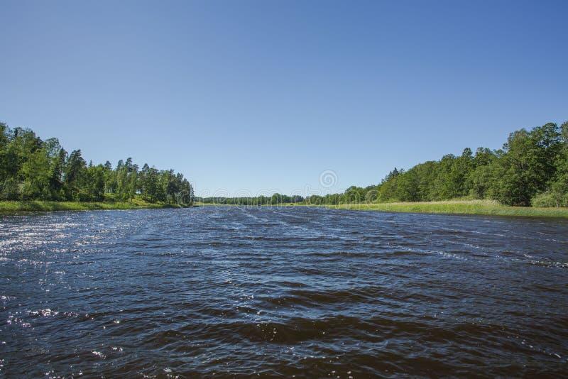 Hermosa vista en el lago el d?a de verano Superficie oscura del agua del lago, árboles altos verdes y cielo azul Suecia, fotografía de archivo