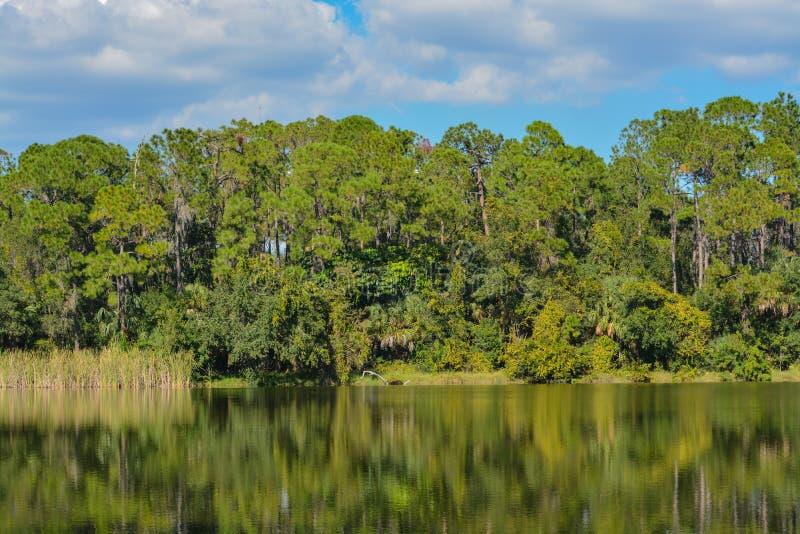 Hermosa vista en el Seminole del lago, Seminole, la Florida foto de archivo