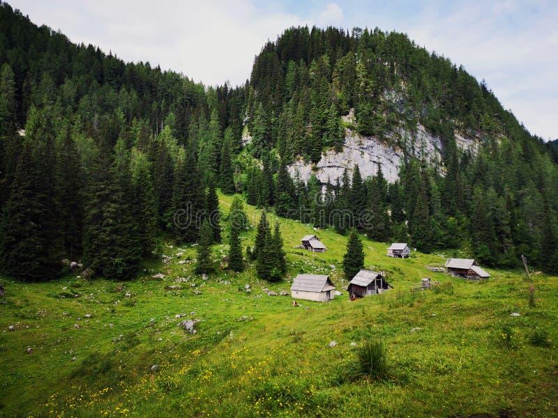 Hermosa vista en paisaje alpino en Eslovenia fotos de archivo