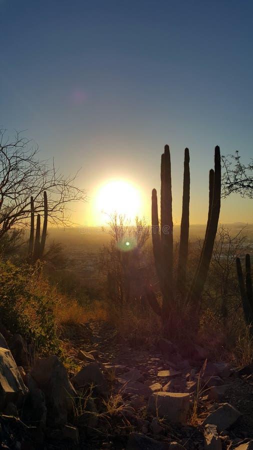 Hermosillo, Sonora. Mexico royalty free stock photography