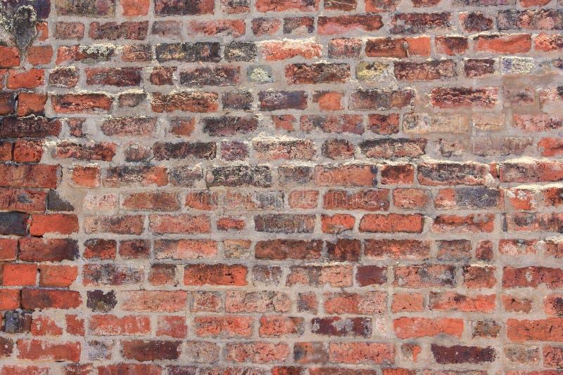 Hermoso colorido arcaico de la textura de piedra de la pared de ladrillo foto de archivo