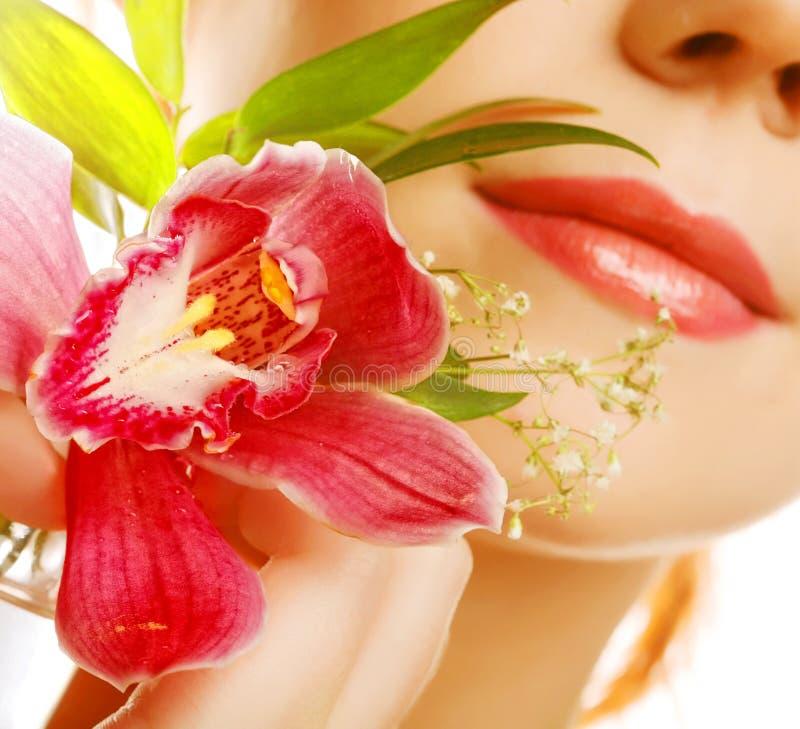 Hermoso con la flor de la orquídea fotografía de archivo libre de regalías