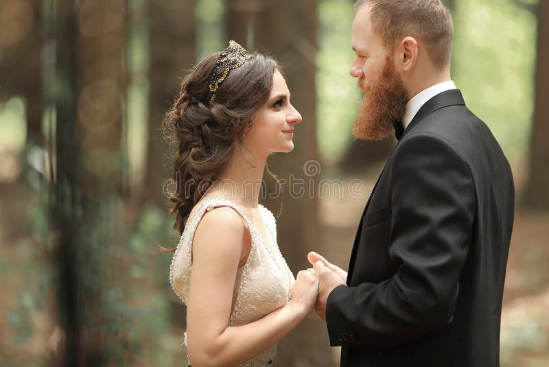 Hermoso en pares del amor en el fondo de árboles en el bosque foto de archivo