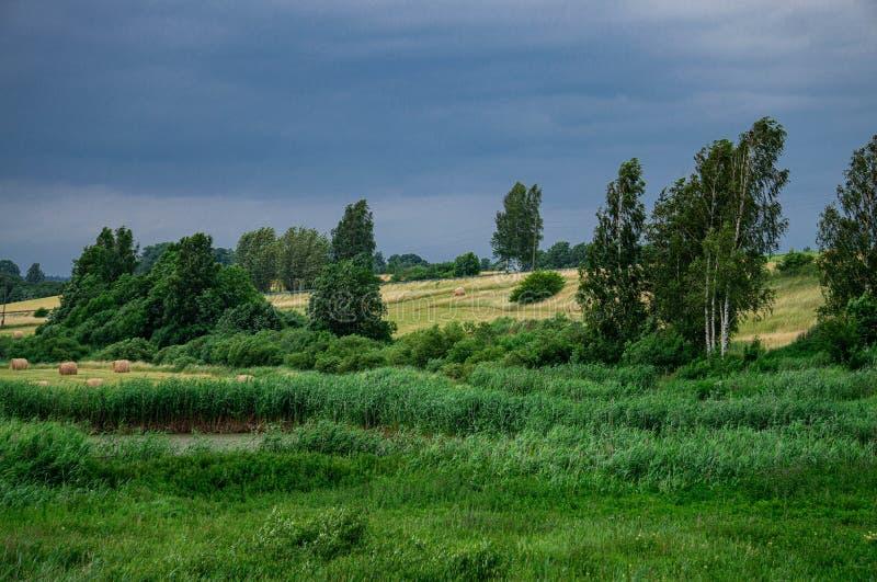 Hermoso paisaje de un campo con rollos de césped cortado y un oscuro cielo tormentoso en Letonia en verano imagen de archivo libre de regalías