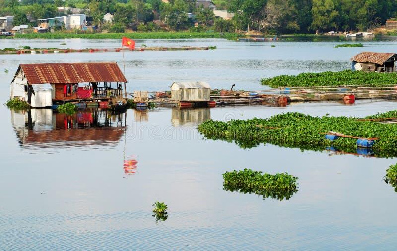 Hermoso pueblo de pescadores vietnamitas en el río Dong Nai, casa flotante, tanque de pesca, jacinto acuático foto de archivo libre de regalías