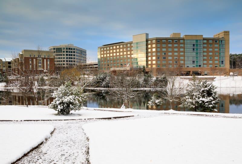 Herndon杜勒斯技术走廊VA公园在冬天 免版税库存照片