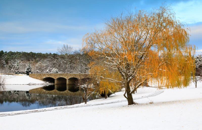 Herndon Virginia Snow Landscape Winter lizenzfreies stockbild