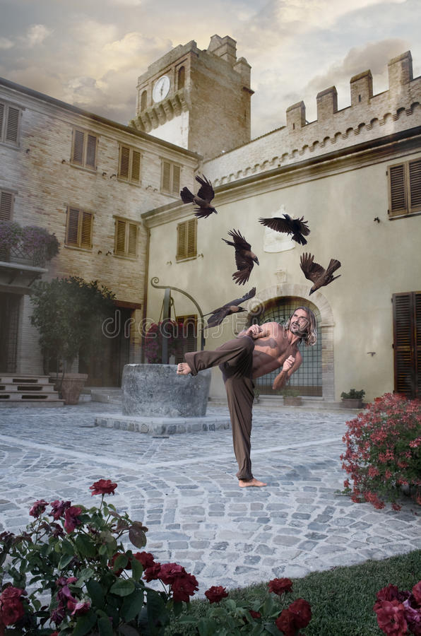 Hero Battles Crows in Medievel Fairytale Scene royalty free stock photography