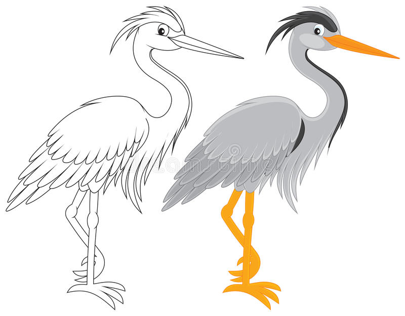 Heron vector illustration