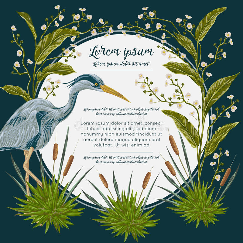 Heron bird and and swamp plants. Marsh flora and fauna. Design for banner, poster, card, invitation and scrapbook. Botanical vector illustration in watercolor royalty free illustration