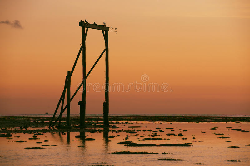 Heron Island`s Gantry at sunset. Heron Island`s Gantry at low tide and at sunset. Heron Island is a small Australian coral cay in Queensland and it is very stock photography