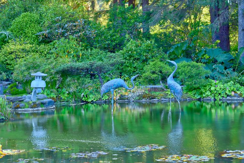 Heron statues in the pond at Shore Acres State Park in ORegon. Heron statues were in the pond at the botanical gardens at Shore Acres State Park in Charleston stock photography