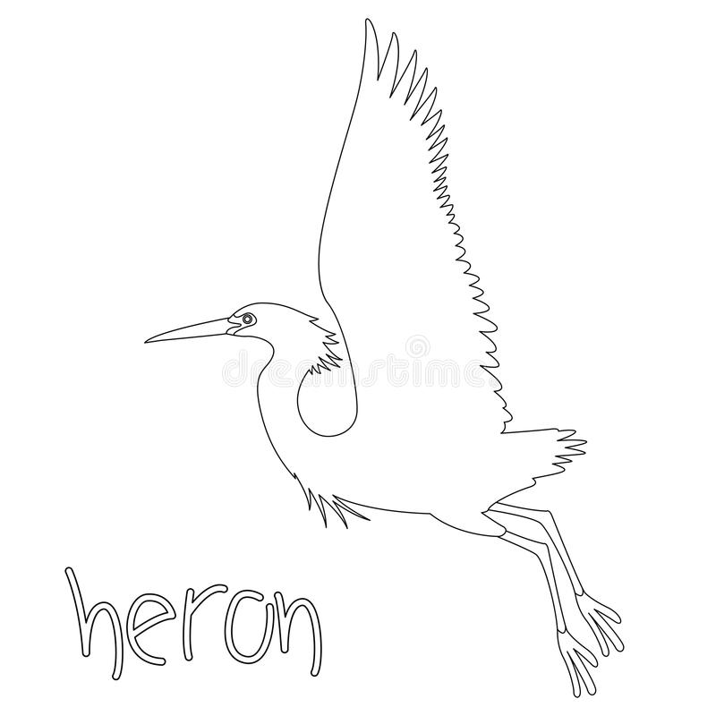 Download Heron Vector Illustration Profile Side Coloring Page Stock