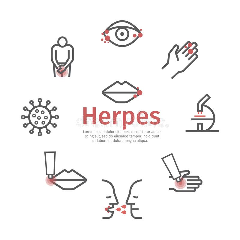 Herpes banner. Symptoms, Treatment. Line icons set. Vector signs for web graphics. royalty free illustration